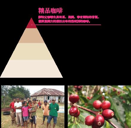 コーヒー豆ピラミッドの頂点にいるスペシャルティコーヒー。農園や地域などが特定でき、香りに特徴のある、農園主の個性が光る特別なコーヒー。